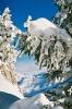 Frühlingsskitag2008_1