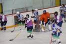 Plausch-Eishockeymatch (31.03.2011)_13