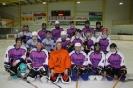 Plausch-Eishockeymatch (31.03.2011)_8